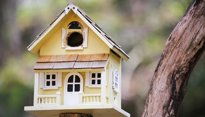 人間のお家をそのまま小さくしたタイプも。