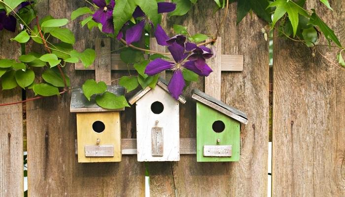 バードハウスは名前の通り、鳥のおうち。お庭やガーデン、軒下などで楽しめるバードハウスはおしゃれで可愛いデザインのものも様々。自分でDIYしたバードハウスをお庭やガーデンに飾っている方も。ガーデンアクセサリーとしてお庭やガーデンのアクセントになります。