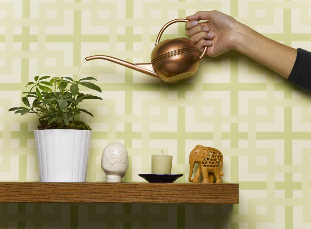 Woman watering pot plant