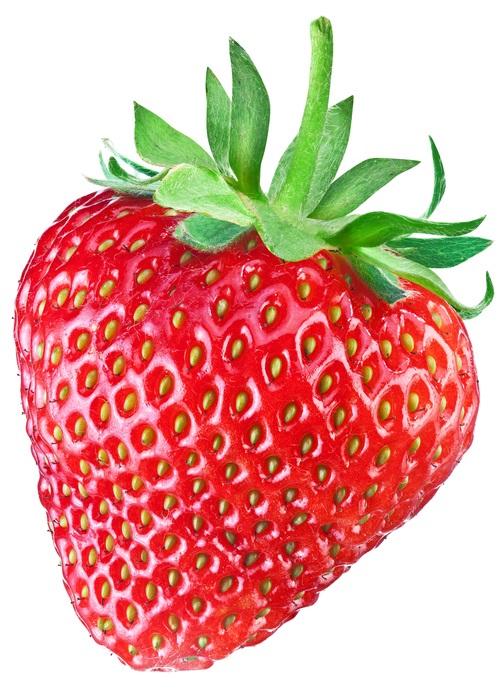 甘くて美味しいフルーツとして人気のあるバラ科オランダイチゴ属の植物のいちご(苺)は、じつは野菜の仲間です。「野菜とは草本性の植物」という意味で、いちごはスイカやメロンと同様に苗を植えて1年で収穫することから一般的な野菜と同じ草本性として分類されています。  いちごはハウス栽培が盛んで、夏の一時期を除いてほぼ一年中出回っていますが、春から初夏にかけてが本来の旬です。四季成りのいちごの品種もあるため、最近では家庭菜園でもいちごを通年楽しめるようになってきました。