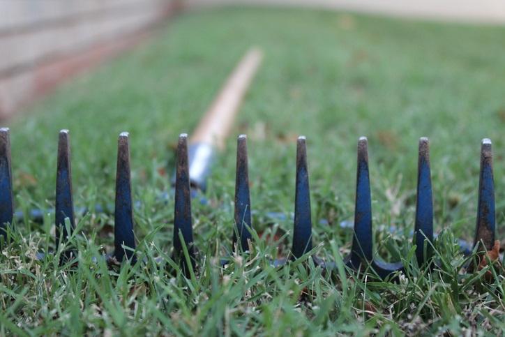 Lawn rake in long view