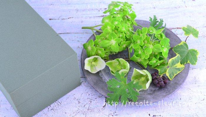 お花は根っこから切った時点で、吸水するのは茎の切り口からだけになります。