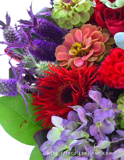 花びらが蜘蛛の糸のような細さということから、スパイダー咲きと呼ばれているようです。こんなに細い花びらの花って、他にはあまりない気がします。通常のガーベラとは、まったく違った印象です。