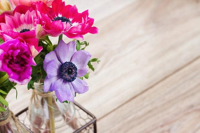 お部屋に飾ってもとても華やかな印象です。花色も赤・白・青・紫・ピンク・オレンジ・黄色など多彩なカラーバリエーションがあるところも嬉しいですね。