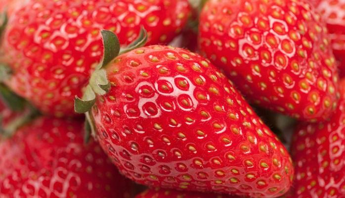 学名:Fragaria × ananassa 科名:バラ科 分類:多年草 イチゴの特徴 イチゴはバラ科フラガリア属の多年草です。イチゴは果物として扱われていますが、木になる果実ではないので、正しくは野菜に分類されます。現在イチゴと呼ばれて流通しているものは、オランダイチゴの仲間になります。