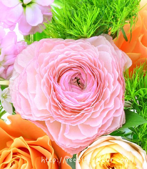 開いてくると・・・花びらがフリルのように、ふわふわと開いてきます。
