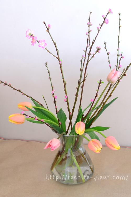 今回は桃の枝が直線的なので、曲線が美しい春の花、チューリップと一緒に生けてみました。