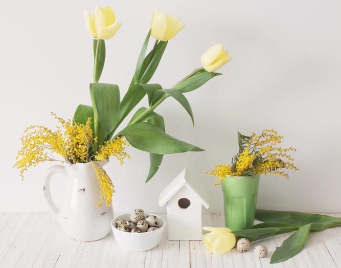 ミモザは小さな花が可愛らしい花です。そのため、大きな花の名脇役にもなります。同系色の花と飾ってもグラデーションが美しく、カラフルな色と合わせてもいいさし色になります。今週末はミモザの入った花束を抱えて帰宅されてはいかがでしょうか。