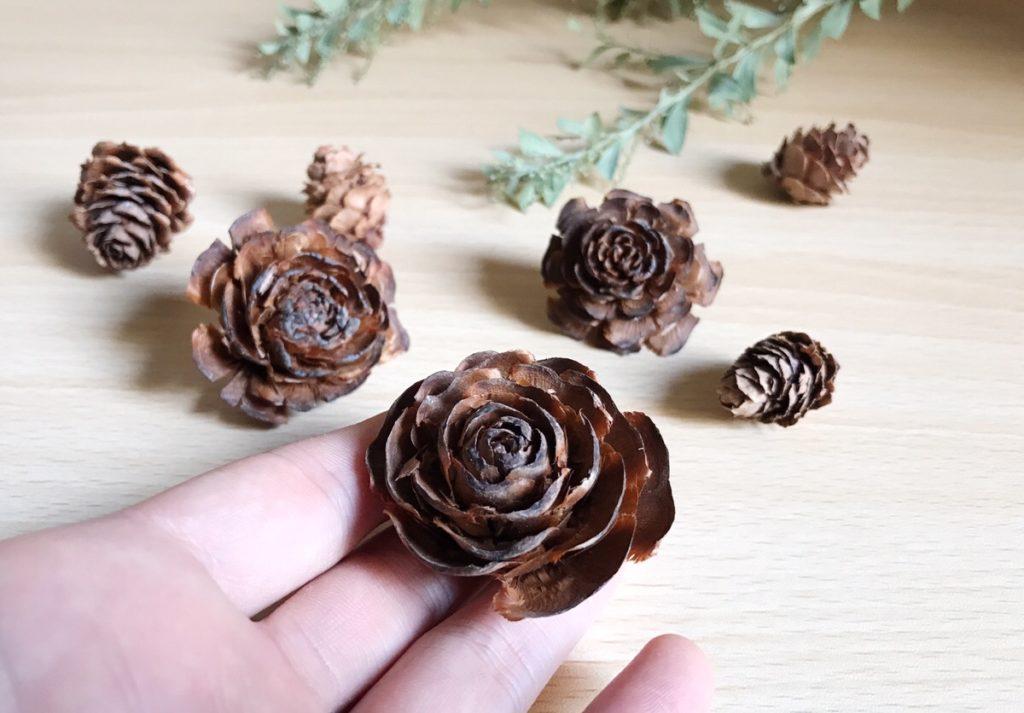 アレンジメントでも大人気の「シダーローズ」。このバラの花ような形の「シダーローズ」、実は、「ヒマラヤ杉」の松ぼっくりなのです。  松ぼっくりとは、マツ科マツ属の植物が付ける球果と呼ばれる果実のこと。松かさ・松傘・松笠松毬とも呼ばれます。