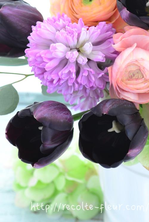 チューリップは光や温度に敏感に反応する性質です。朝になると開き、夜になると閉じるを繰り返します。また、切り花にしてからも茎が伸びます。