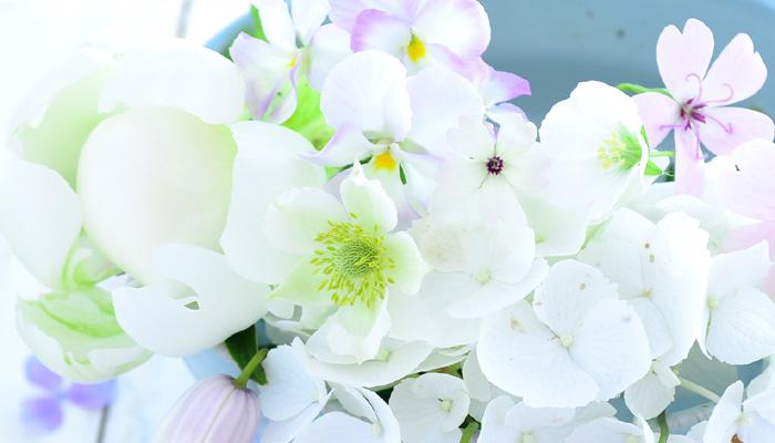 左側の花は初夏に出回るシャクヤク。ゆで卵みたいな色の白です。中心は原種のアネモネ。