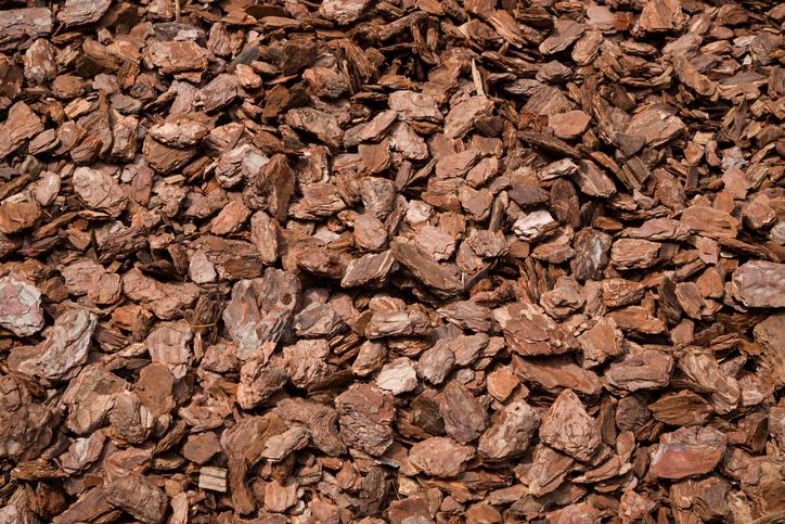 バークチップは松の樹皮を乾燥させて砕いたもの。インテリアバークとも言われています。