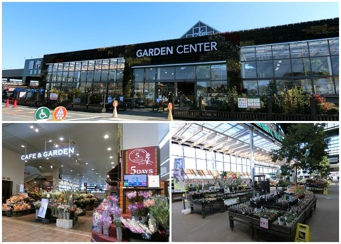 『ガーデンセンター』は、カフェ、グリーン、ライフスタイル雑貨売り場が一体となった開放的なアトリウム空間で、季節の花苗、ガーデン用品・資材、ガーデンファニチャーをはじめ、切り花、鉢植え植物、観葉植物、多肉植物等などの商品が充実しています。