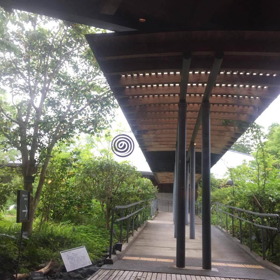 牧野富太郎記念館の本館と展示室は屋根付きの回廊でつながっています。車椅子やベビーカーにも対応でスロープがあります。
