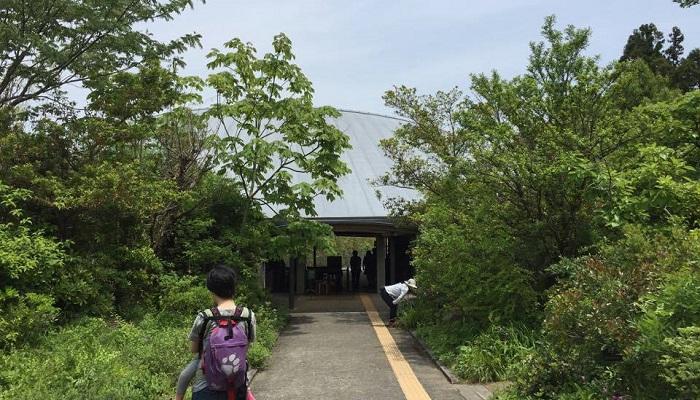 正門から本館までの間は土佐の植生がテーマになっています。