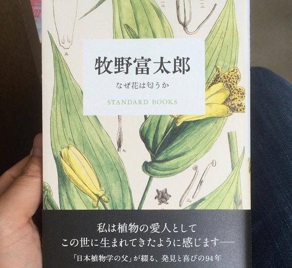 「なぜ花は匂うか」牧野富太郎 平凡社から出版されているSTANDARD BOOKS Ⅰ期 科学と文学両方の知性を持ち合わせた科学者・作家の随筆を一人一冊にまとめたシリーズ本です。牧野富太郎先生の随筆がまとめられています。「植物と心中する男」などタイトルから面白さがわかります。