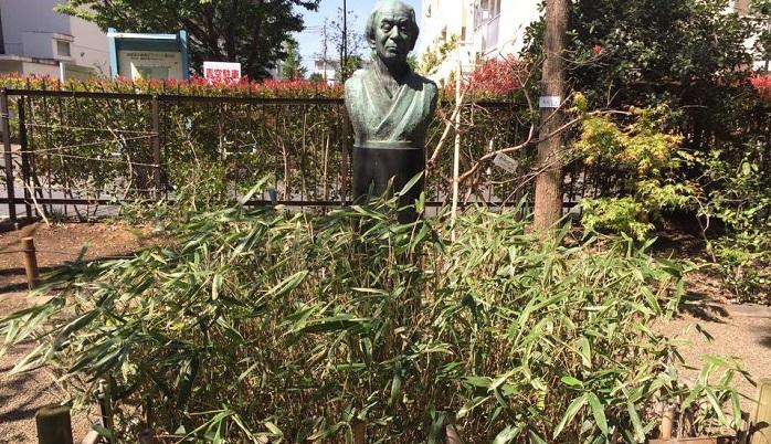 牧野富太郎先生の銅像とスエコザサ。