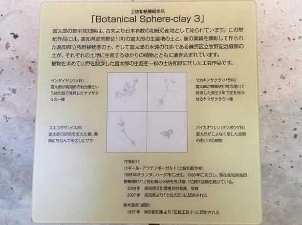 中に入ると土佐和紙の壁紙作品「Botanical Sphere-clay 3」がありました。