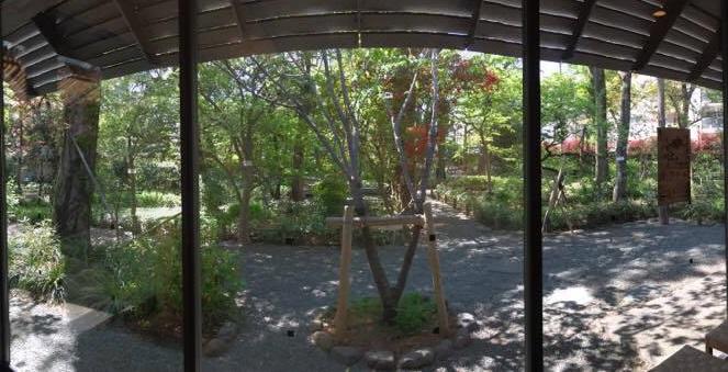 記念館の中からパノラマでお庭を撮影。とにかく木漏れ日がうつくしい!