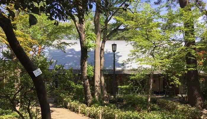 建築の設計は高知県立牧野植物園の設計と同じく内藤廣氏ですが、やはり植物に溶け込むようなイメージの建物です。