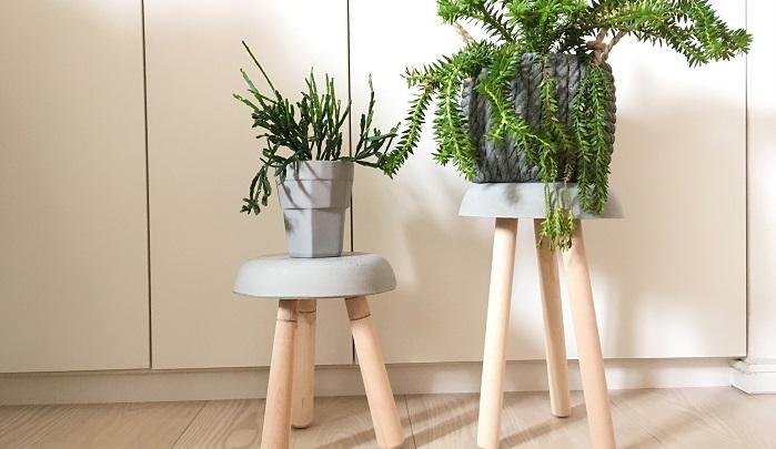 お部屋の中で観葉植物を飾ってみたり