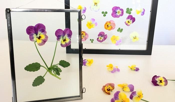 またお花がしおれてきたら花びらを取り替えたらいいので気楽に楽しめますね。