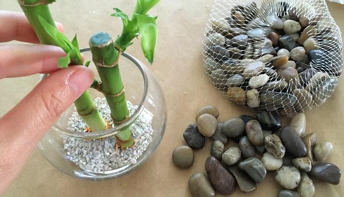ガラスに植物をセットしバランスをみながら配置を決めます。
