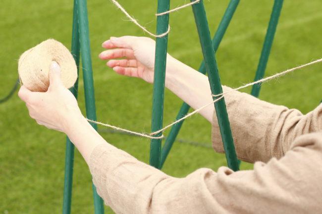 しっかり固定出来たら、麻ひもをクルクルと巻きつけていきます。  このように一度支柱に巻きつけることでずり落ちることを防ぎます。後は、キュウリの苗が生長次第この支柱の周りをぐるぐると這わすようにして誘引していきます。