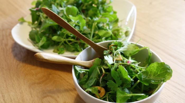 薬剤処理が気になる方は、農薬処理をしていない種から発芽し、間引きしたものをベビーリーフとしてサラダで美味しくお召し上がり下さい。