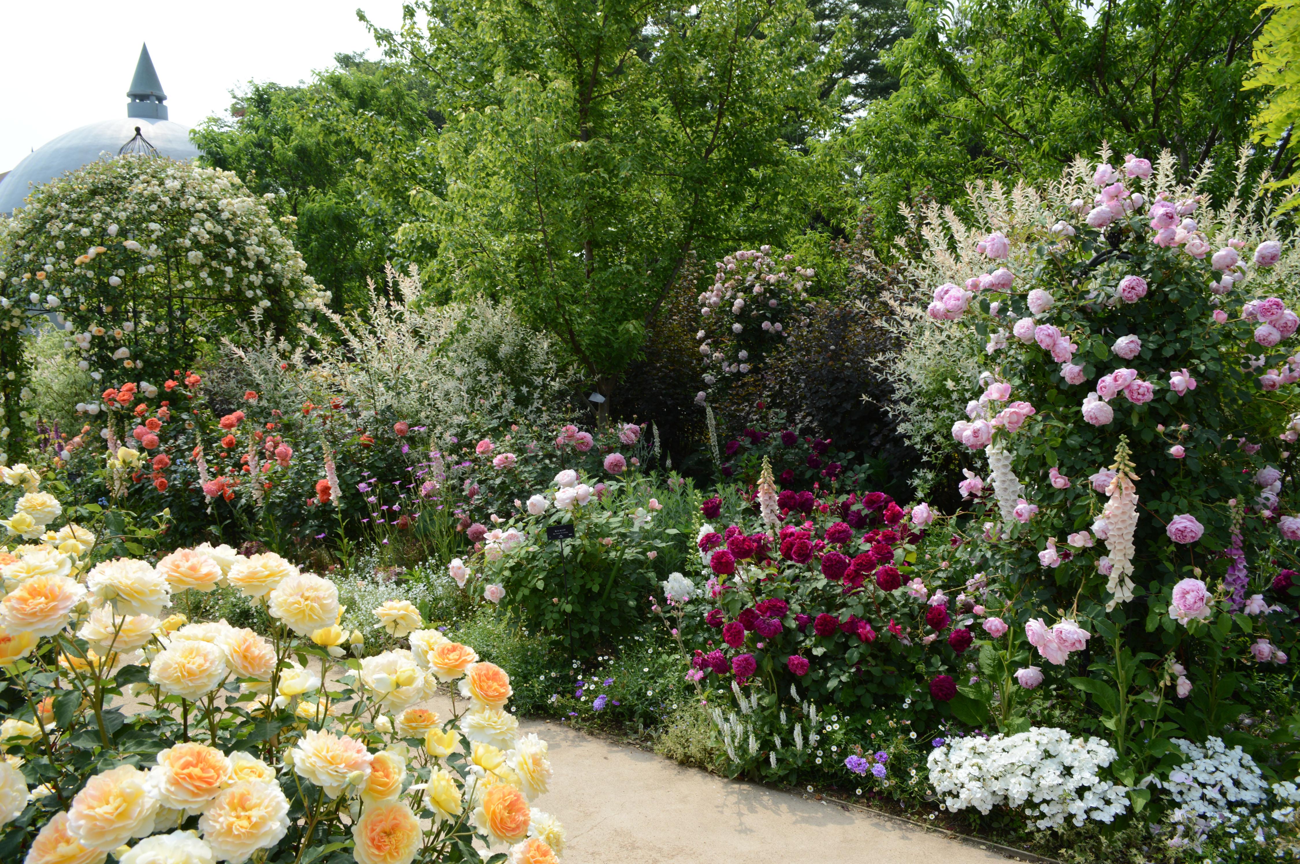 ディティールの細かさも東武トレジャーガーデンの魅力の一つ。庭の隙間を埋め尽くすような宿根草とバラの花が素敵です。