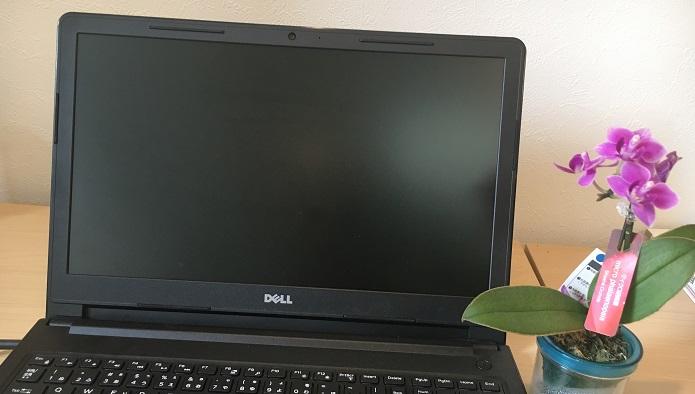 サイズの小さい胡蝶蘭(コチョウラン)なら好きな場所に飾れます。パソコン脇に置いて花に癒されながらデスクワーク、なんてことも可能です。