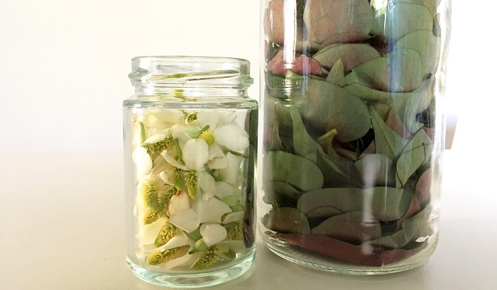 準備しておいた保存瓶にドクダミの花と葉をそれぞれ8分目位まで入れます。