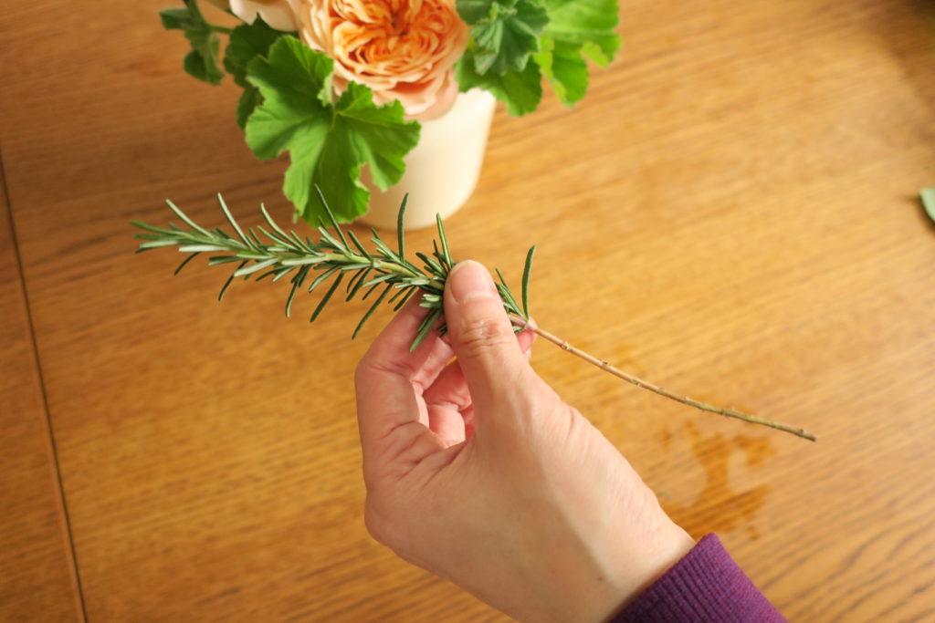 ローズマリーの花瓶に入る部分の葉を取る