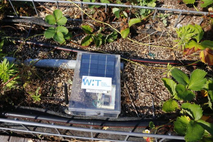 このスマート菜園の内容は、例えば、土壌の上部と深部の水分量を測り、水をまくタイミングに使用されている機器です。30分に1回Webにアップされ、会員制のHPで管理しているため、菜園に行けない会員様はこのサイトで作物を観測することができます。  他にも、気温、土壌のph、日照、気温、湿度、土壌ECなども測定され、区画と作物ごとに環境の変化とともに作物の画像を交えた作業日誌を製作できる、一歩進んだ農業です。  植物の勉強や農業を目指す子供たちの、興味関心を満たし、夏の自由研究にも活用できる素晴らしいスマート菜園ですね。  こちらの試みは、スマート菜園と東京農業大学と都会の農園が共同研究で進められています。  装置からのデータをもとに、集められたデータを活用して、解析し今後に生かす活動をしています。