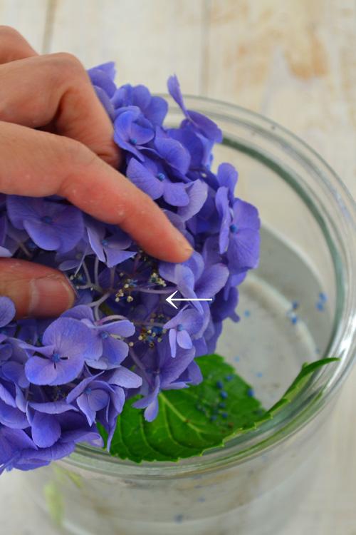 ガクの中央の他、ガクをかきわけた奥にも花があります。