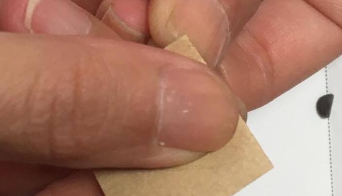 3. 紙ヤスリを使い、種をこすって傷をつけます。
