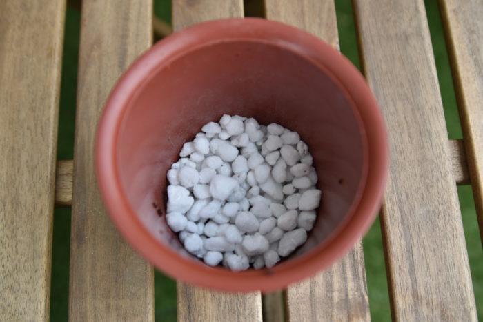 鉢底に鉢底石をしっかり入れます。