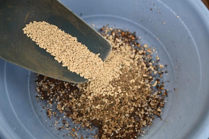 最後に赤玉土と同じ量の鹿沼土を入れます。
