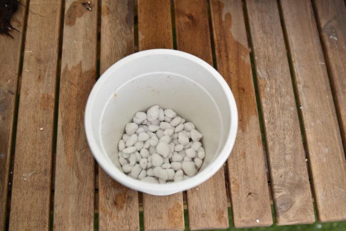 一回り大きいサイズの鉢を用意します。あまりに大きいサイズの鉢に植え替えてしまうと土が中々乾かずに根腐れを起こす可能性があるので、一回り大きい程度の鉢にします。  鉢に鉢底石を入れまます。鉢底石を入れる事で通気性と排水性を確保できるので、必ず入れてください。