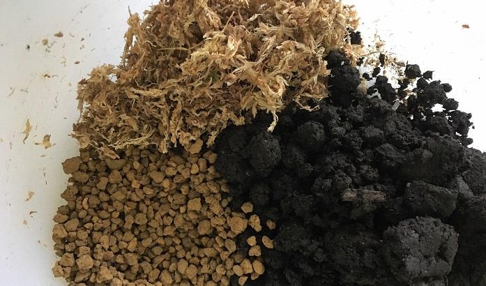 下準備 苔は水につけて水分を含ませておきます。  ①ケト土、赤玉土小粒、細かくした水苔を全部ボウルに入れてよく混ぜ合わせます。