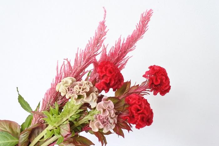 最近では切り花としても人気が出て、晩夏から秋のアレンジによく用いられます。ドライフラワー作りにも向いている花です。