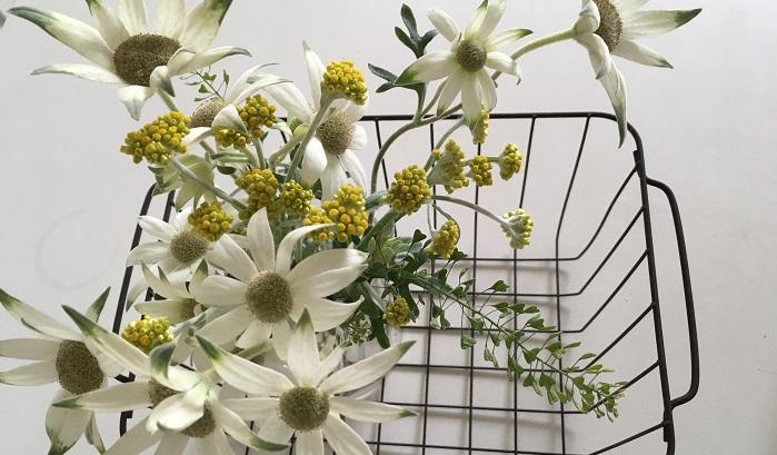 暮らしにうまくドライフラワーを取り入れて、花のある暮らしを楽しんでみてはいかがでしょうか。