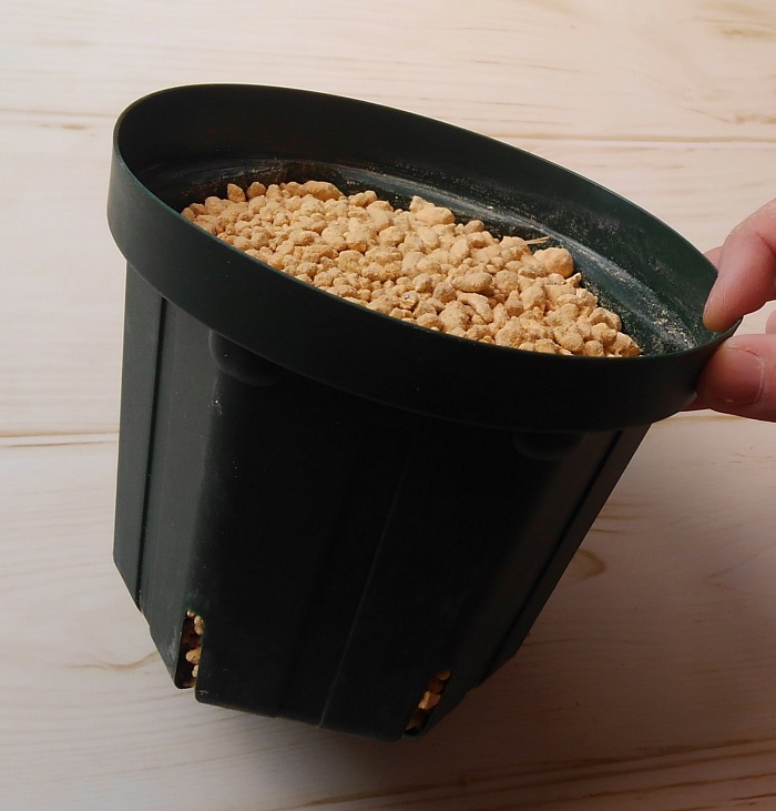 用土は、水はけが良く、清潔で肥料分が無いものがおすすめです。肥料分があると、挿した枝が発根するまでに腐ってしまうことがあります。  挿し木の用土には、赤玉土、鹿沼土、川砂、パーライト、バーミキュライトなどが適しています。粒のサイズがいろいろある場合は小粒がおすすめです。用土は混ぜないで単用で使用できるので、新しい用土を袋から出してそのまま使えます。枝を挿す前に、水をたっぷりかけておきます。  今回は小粒の鹿沼土を単用で使いました。