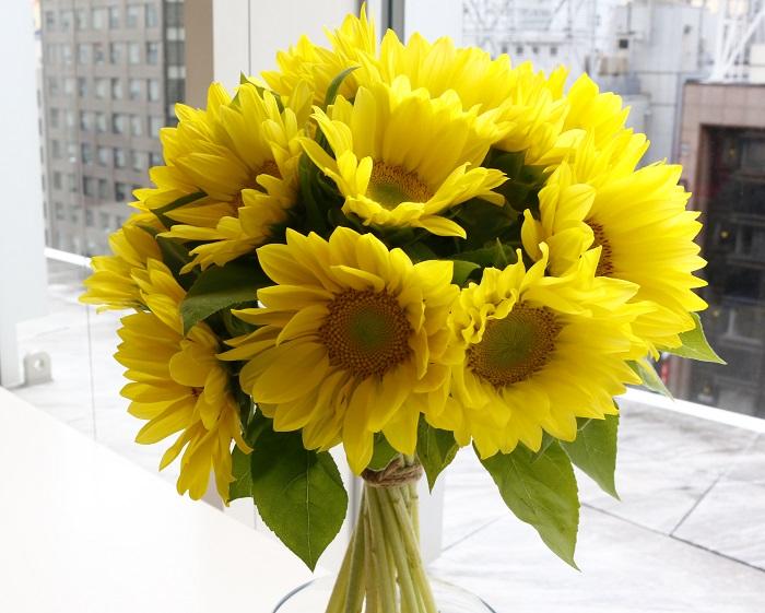 ひまわりといえば、太陽に向かって咲く、はじける笑顔が似合う花ですよね。  今回はサカタのタネさんから、ひまわり『ビンセント』をご紹介いただきました。