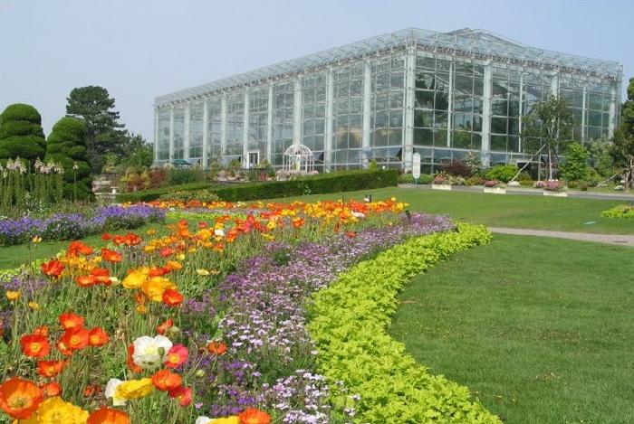 静岡県にあるはままつフラワーパーク。広大な敷地に四季の花が色鮮やかに咲き誇る憩いのガーデンです。園内にはクリスタルパレス(大温室)をはじめ、日本庭園・大規模な花菖蒲園・紫陽花園・梅園・ローズガーデンなどの施設があります。またこの植物園は浜松市動物園と隣接していて、共通券を購入すると両園を自由にめぐることができます。