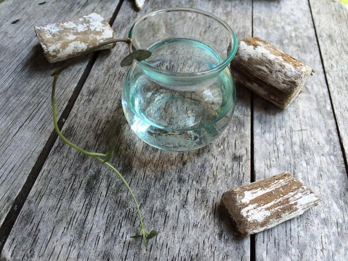 ハートカズラは水に挿しておくと発根しますので、根が出てきてから土に挿して増やすこともできます。ぜひ試してみて下さい。