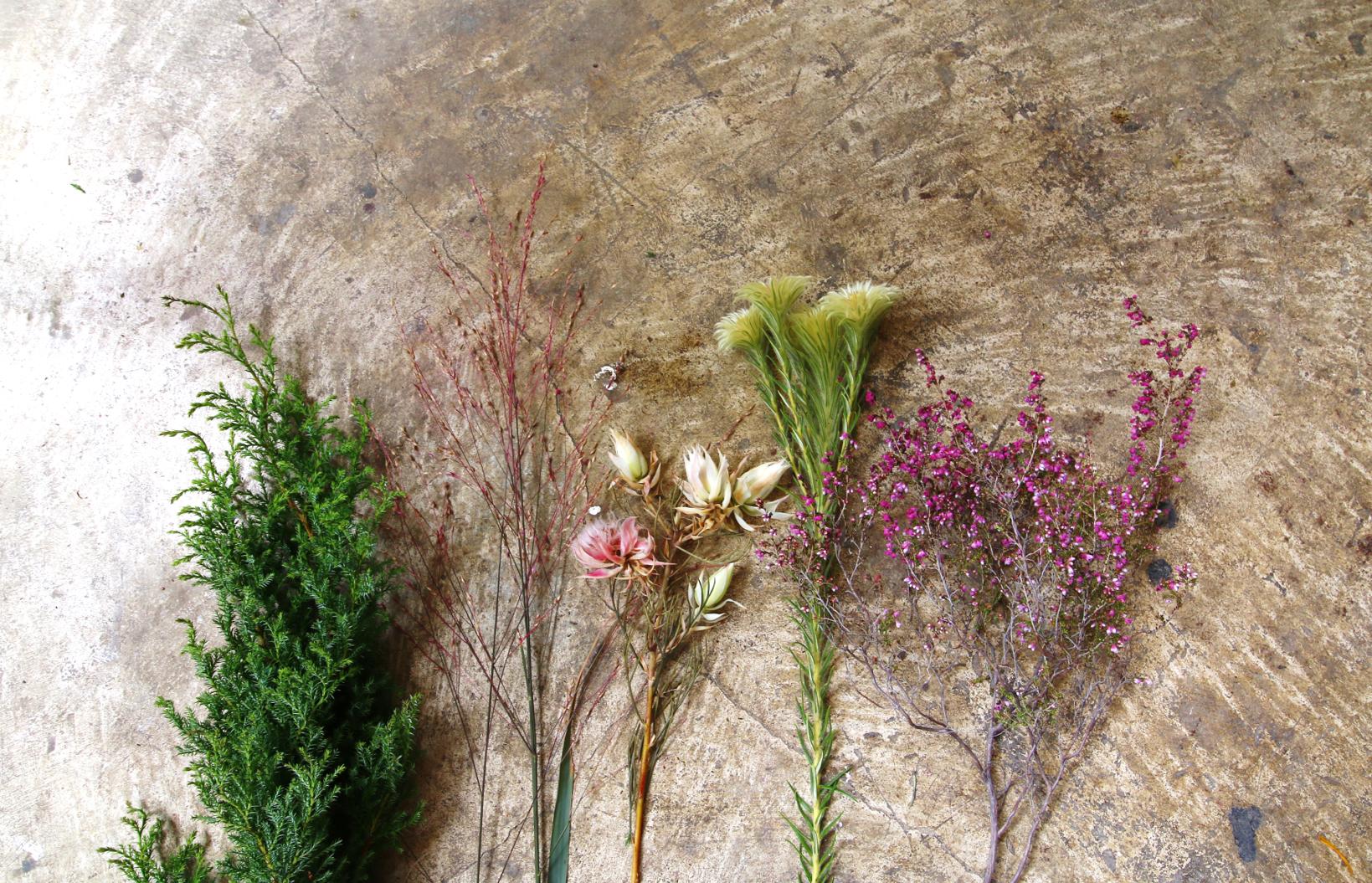 細かく枝分かれしたお花をまとめたミニスワッグも、賑やかな雰囲気で素敵です。こちらの花材は、左からヒムロスギ、パニカム、セルリア、フィリカ、エリカの5種類です。