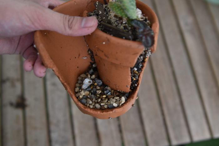 階段部分以外に植物を植えたら、階段部分を崩して砂利を鉢底に敷きます。  これは水はけを良くするためなので、必ず入れてください。