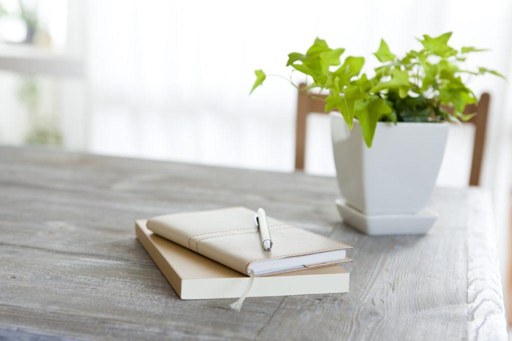 まず、はじめるなら何の植物がいいの? 育てやすい植物って何? という方に向けて、おすすめの観葉植物を紹介します。