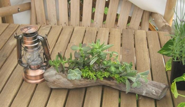 サイドは横向きに植える、または横に伸びる植物を植えるとバランスが良くなりますよ。上はあまり高くなりすぎないように植えると全体的に見栄え良くなります。